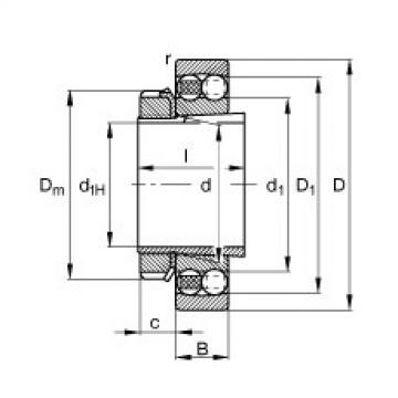 Bantalan 2318-K-M-C3 + H2318 FAG