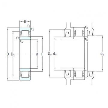 Bantalan NU1012M/HC5C3 SKF