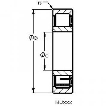 Bantalan NU236 M AST