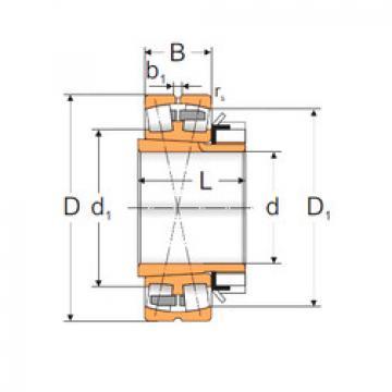 Bantalan 23060 ACKMBW33+H3060 MPZ